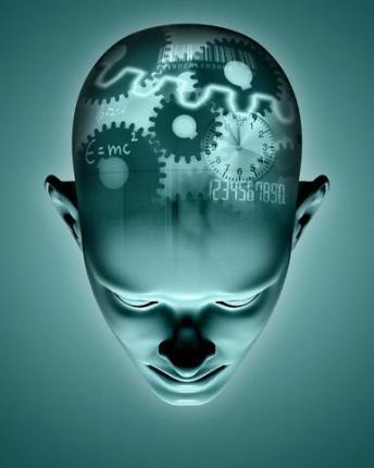 Identifican el gen responsable de la formación de recuerdos  47377286_1